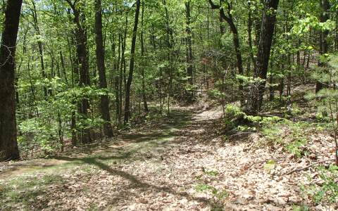 5.4AC  LAUREL HILL LANE