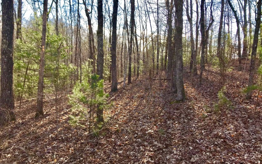 LOT80  RIVERWALK THE TOCCOA