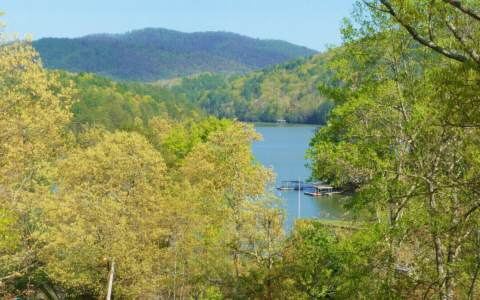 2045  SHADY FALLS RD, BLUE RIDGE, GA