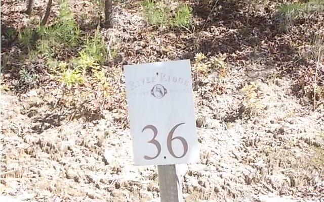 LT 36  CASCADING BROOK LANE