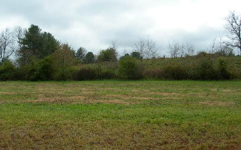 NC mountain property LT 20 MCGLAMERY FARM,Hayesville,North Carolina 28904 ,River access lot For sale,River access lot,184112 mountain real estate
