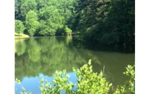 NC Mountain Home ,69 LAZY CREEK LN,Murphy,North Carolina 28906,view,cabins,mountain homes for sale