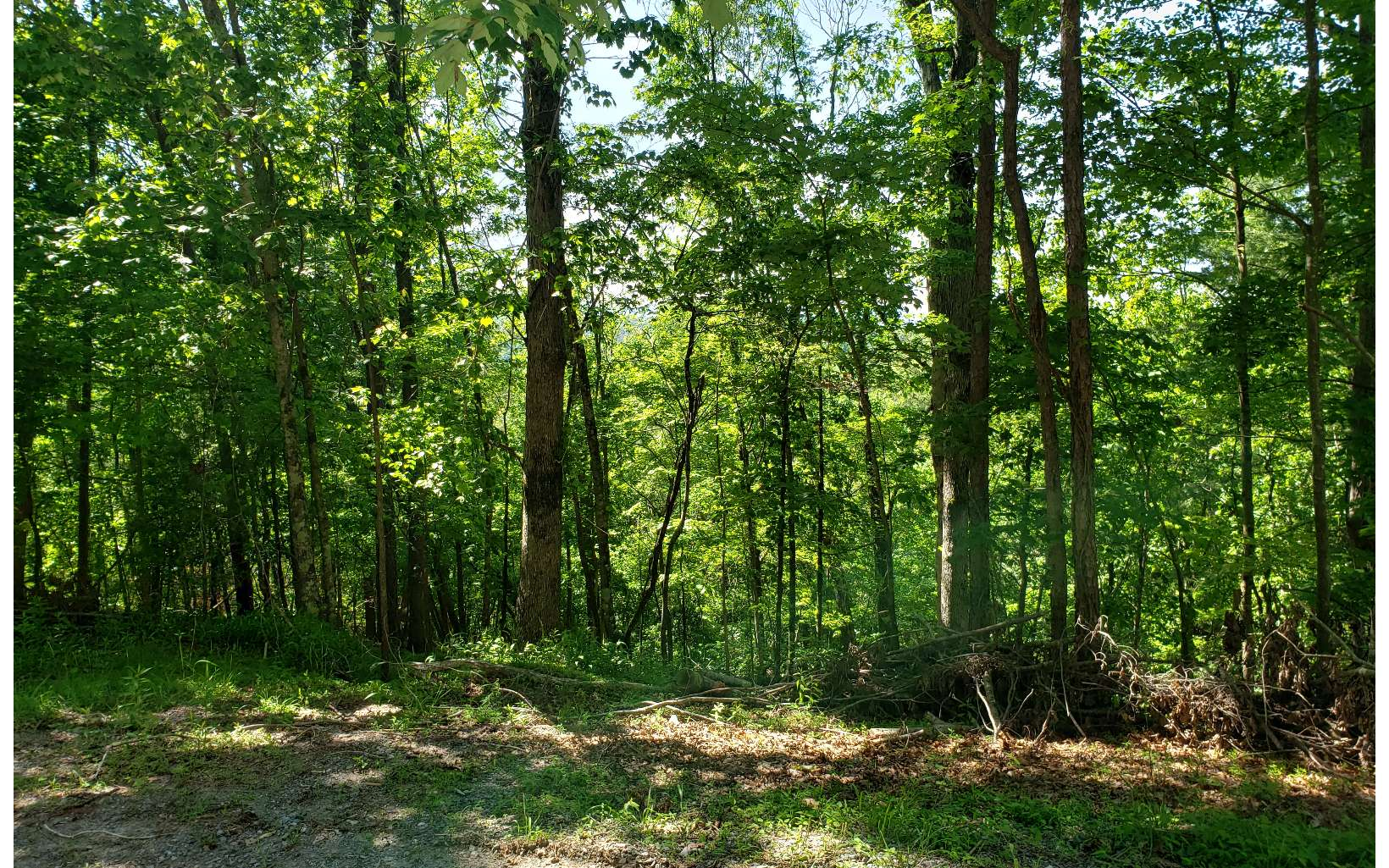 CHEROKEE CT LOT 461
