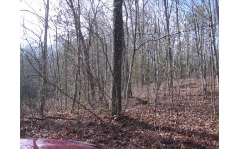 LOT5 TOMAHAWK TRAIL,Epworth,Georgia 30541,Georgia Mountain Vacant lot,Vacant lot,North Georgia Real Estate,244717Gary Ward