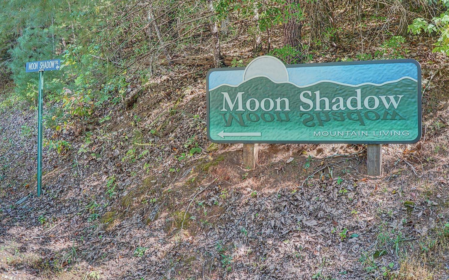 LOT R  MOON SHADOW VIEW