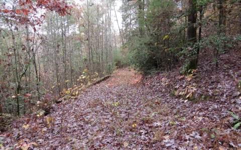 LOT 5 TWIN CREEKS ROAD,Epworth,Georgia 30541,Georgia Mountain Vacant lot,Vacant lot,North Georgia Real Estate,253020Gary Ward