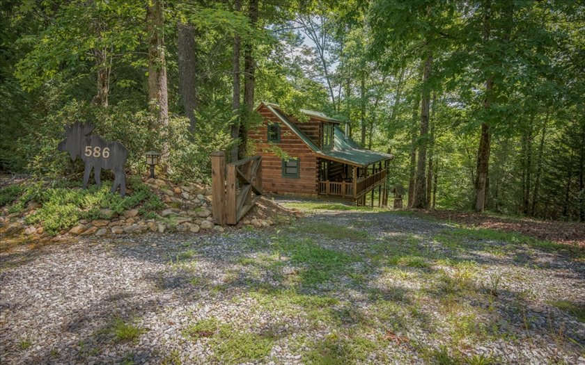 586  WHITE PINE TRAIL