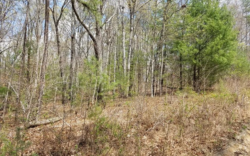 AFFORDABLE lot in Laurel Crossing. Gentle, Wooded with Seasonal View. Near the end of the Road. Private, several new homes in the area. Within 10 minutes of Blue Ridge, Toccoa River and Lake Blue Ridge. Restrictions but no HOA fees.
