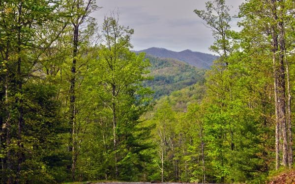 North Carolina Mountain land for sale SLATE STONE,Hayesville,North Carolina 28904,Vacant lot,SLATE STONE,274722,land for sale Advantage Chatuge Realty