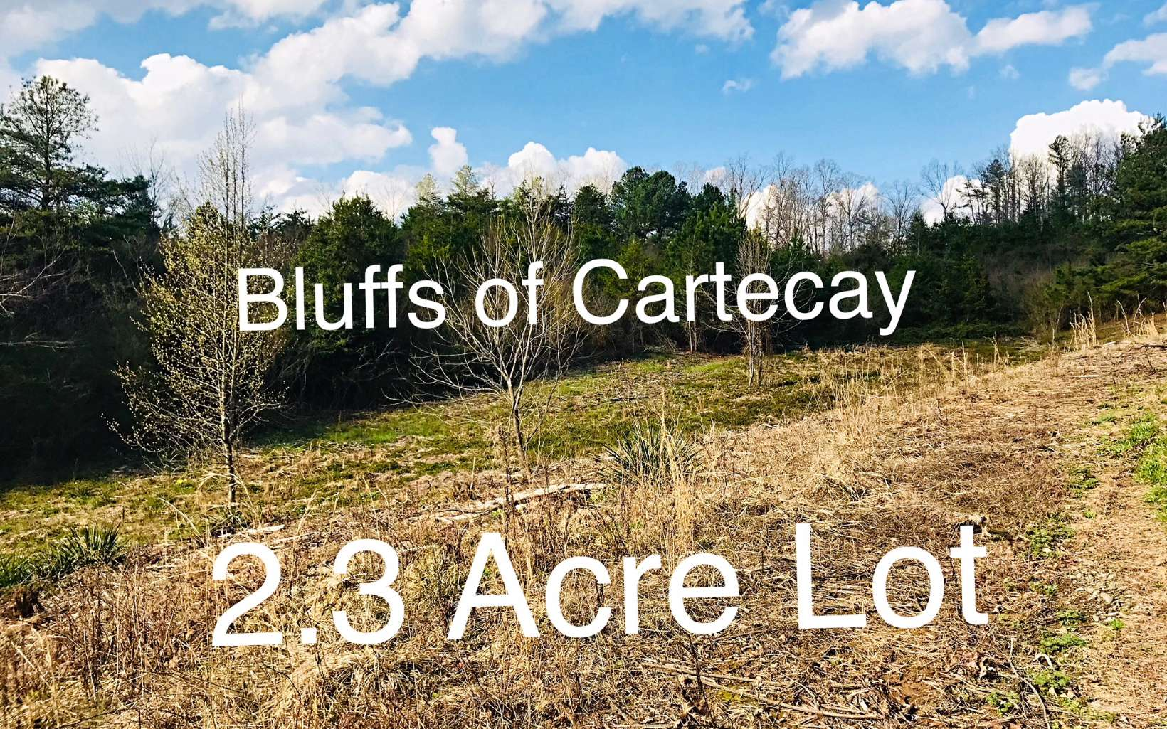 BLUFFS OF CARTECAY