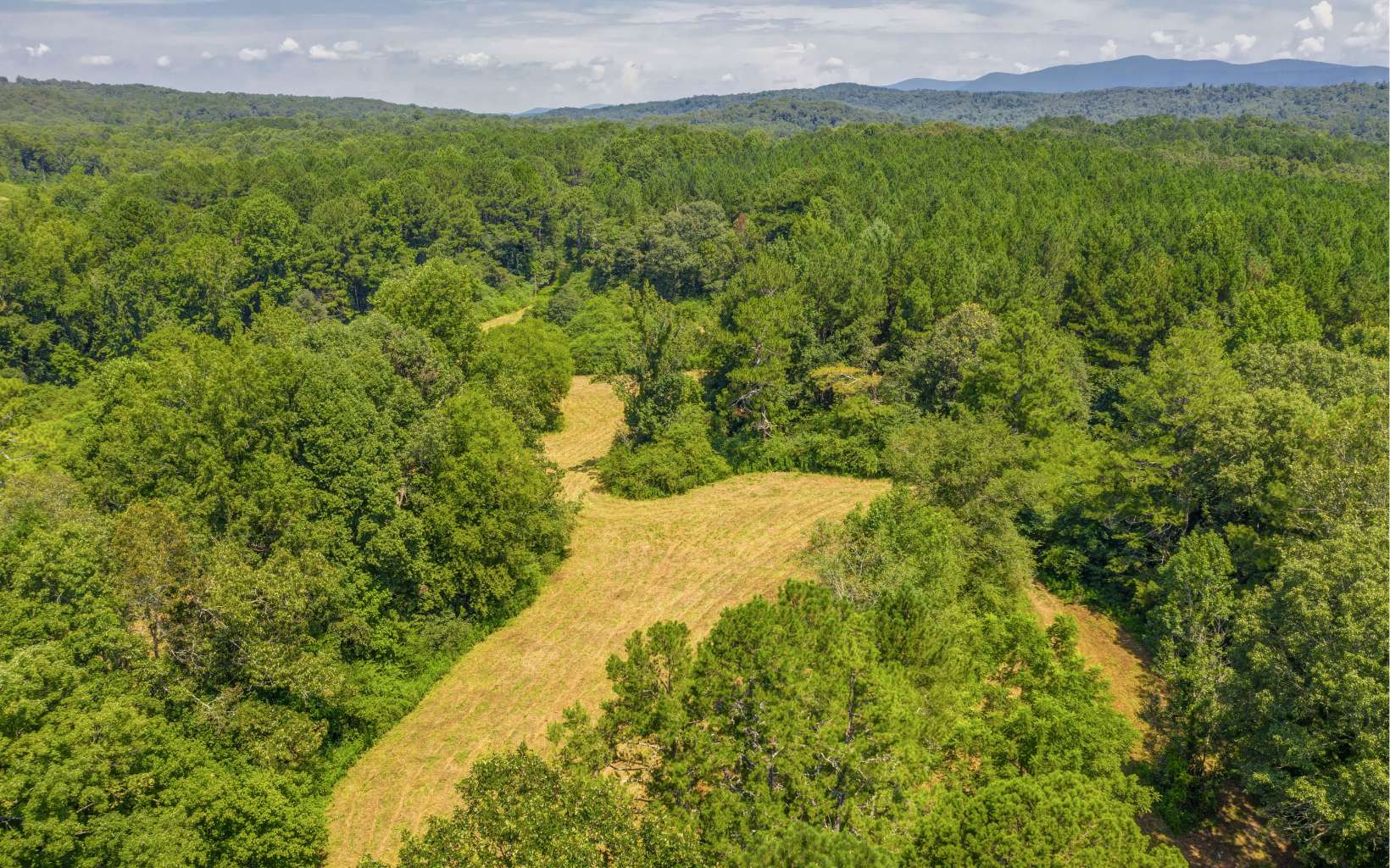 MLS #290623 - Beautiful 26 46 acre land would make an amazing horse