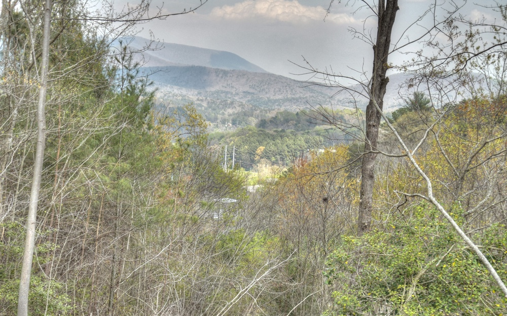 LT36 SUMMIT VIEW DRIVE, Ellijay, GA 30540