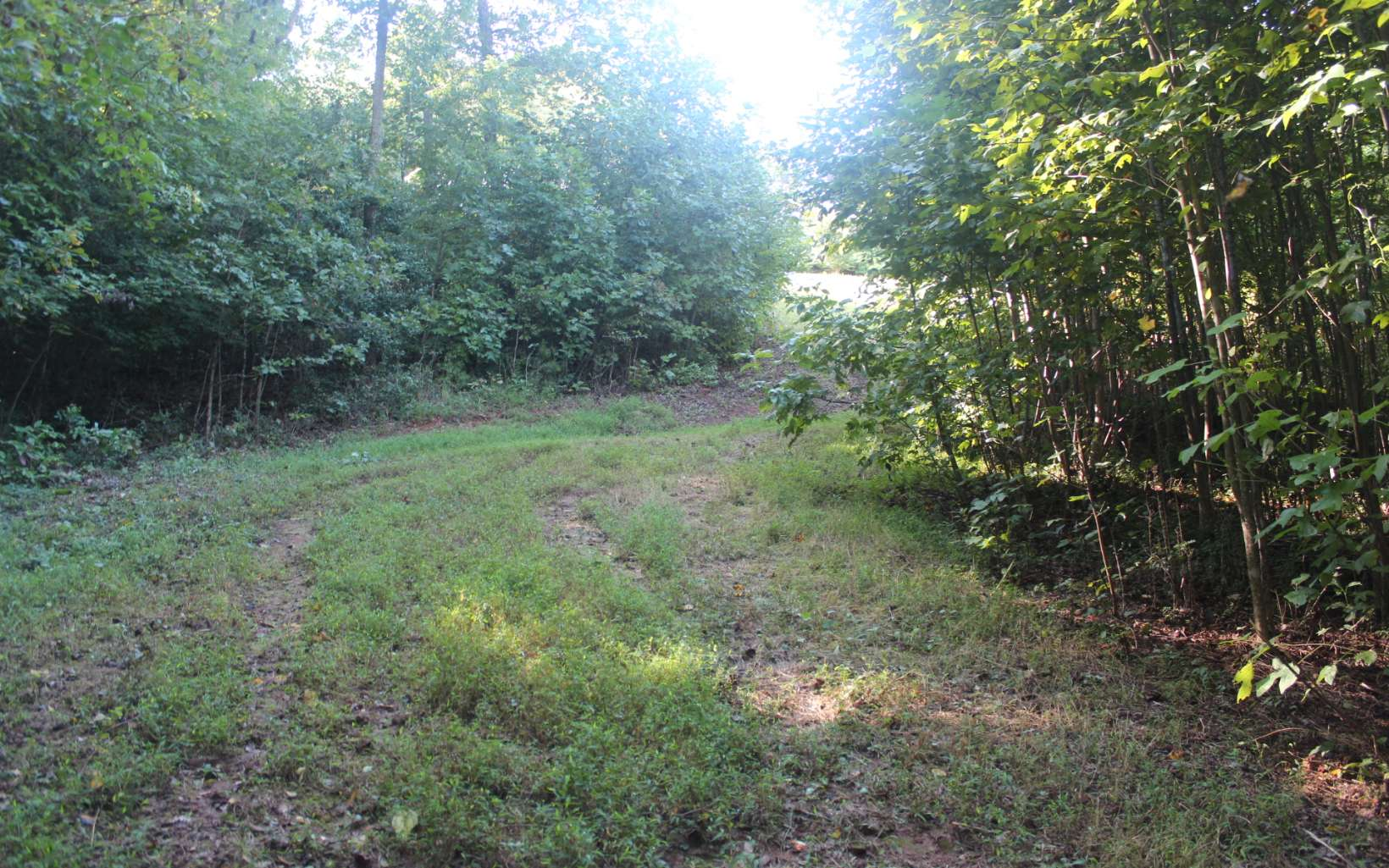 LOT 6  TAHLEQUAH RIDGE