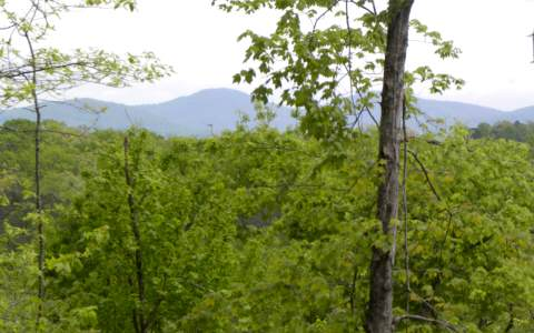 8.44 AC WOODTHRUSH LANE, BLUE RIDGE, GA