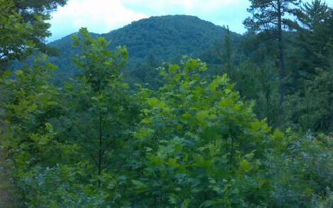 28.5 AC QUAIL RIDGE RD., BLUE RIDGE, GA