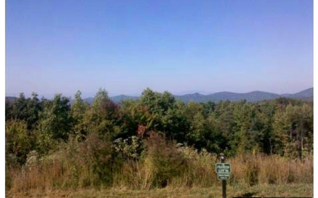 North Carolina Mountain land for sale LT 41 THE SANCTUARY,Murphy,North Carolina 28906,Vacant lot,THE SANCTUARY,254437,land for sale Advantage Chatuge Realty