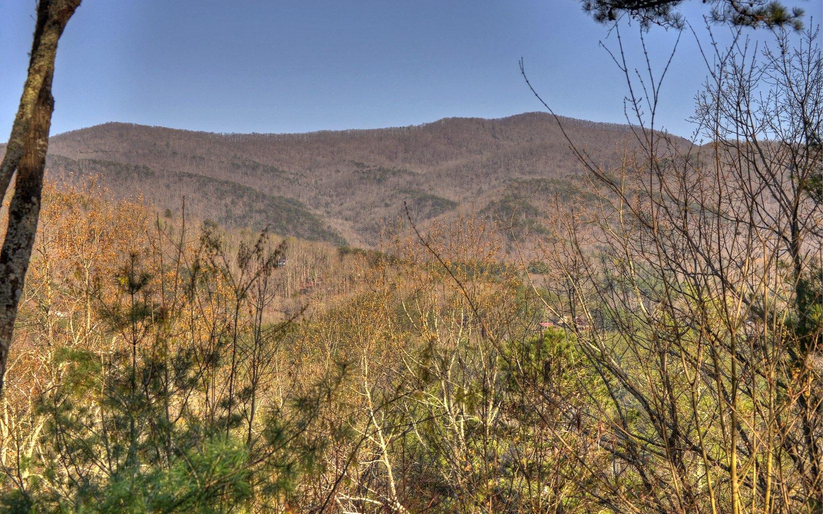 16  MOUNTAIN VIEW TER