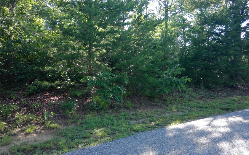 LOT12  HOMESTEAD SHARPTOP