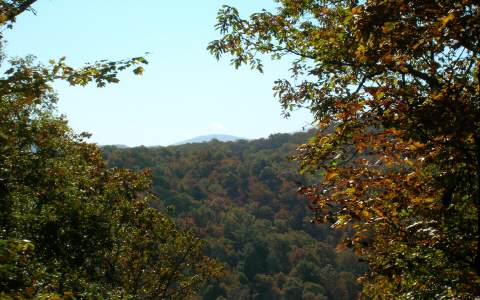 21 AC  GOLDEN OAKS, BLUE RIDGE, GA