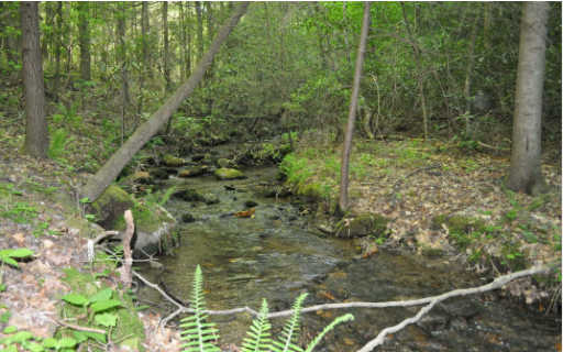 CREEKSIDE RD 53.3 AC, ELLIJAY, GA