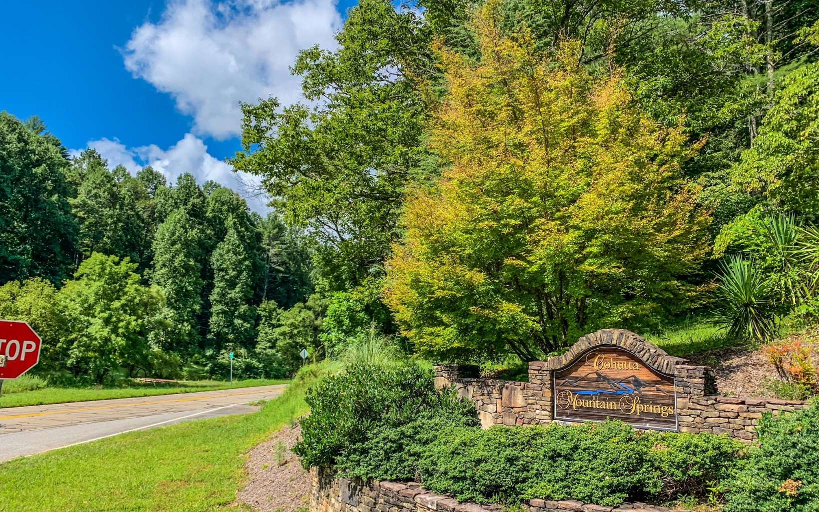 LOT 3  MOUNTAIN SPRINGS RD