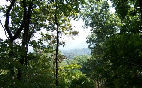 Mountain Property SHARONS VALLEY,Hayesville,North Carolina 28904 ,Vacant lot For sale,Vacant lot,SHARONS VALLEY,176844 Real Estate