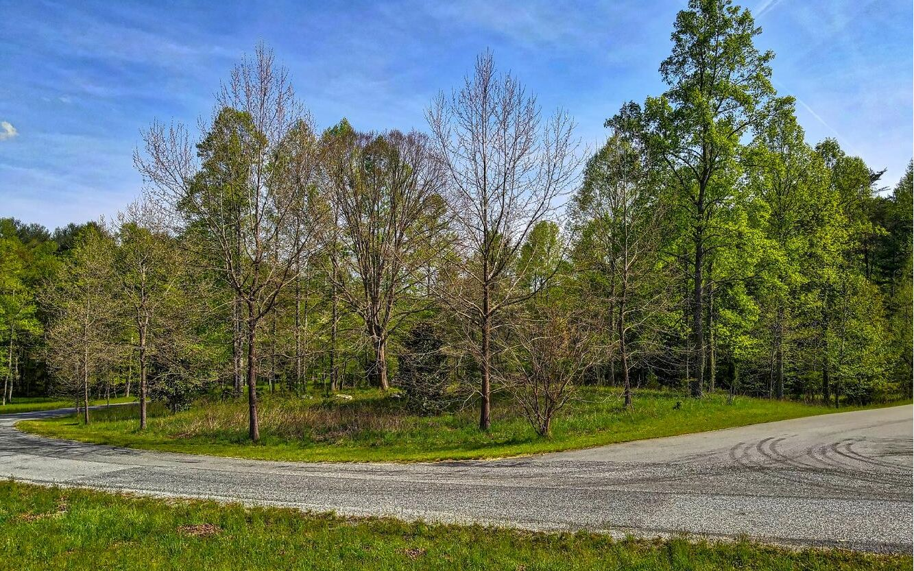 LOT 1  SPRING HILL- 6AC