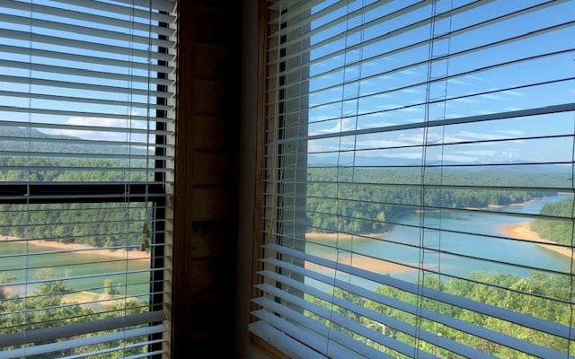 321  SCENIC VIEW DR