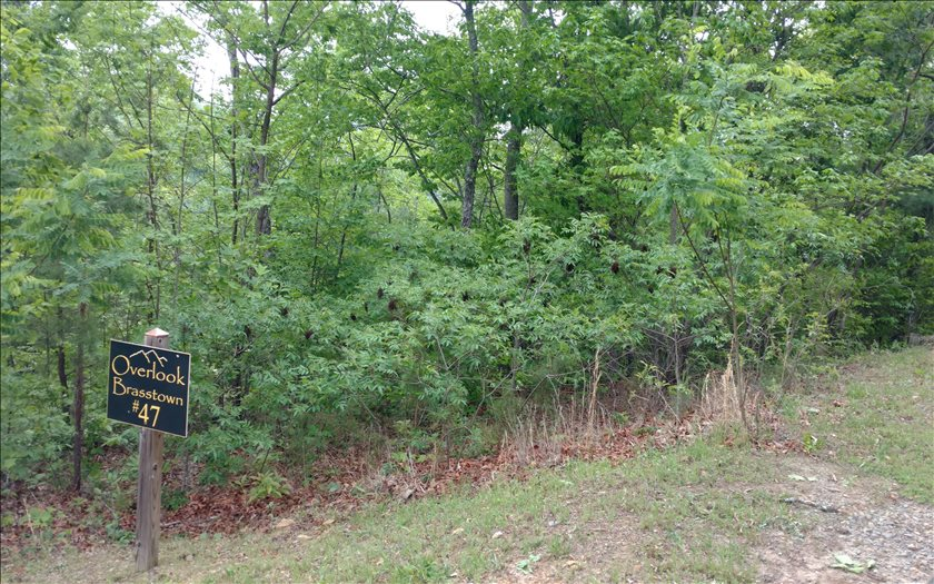 NC mountain property LT 47 OVERLOOK BRASSTOWN,Brasstown,North Carolina 28902 ,Vacant lot For sale,Vacant lot,267249 mountain real estate