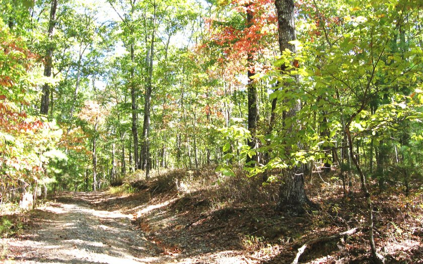 29.62 AC THOMAS MOUNTAIN ROAD