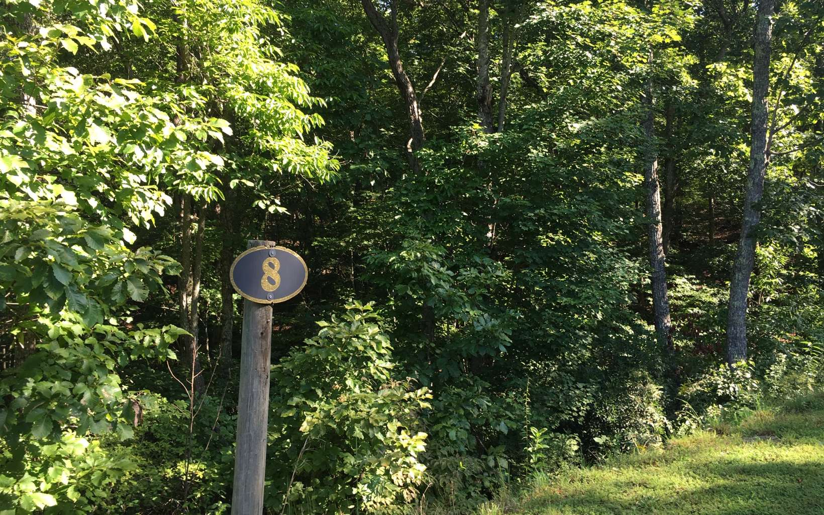 LOT 8  MEADOWBROOK TRAIL