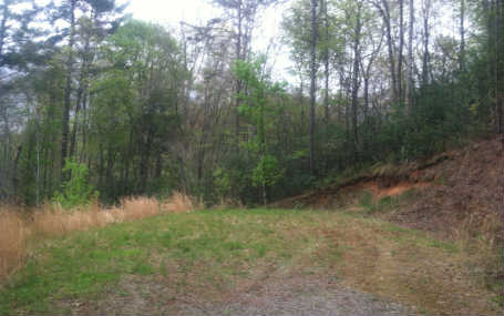 LOT 40 MYSTIC FOREST, TOPTON, NC