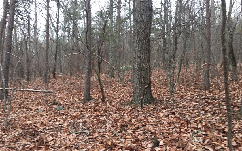 LOT54  VALLEY VIEW DR