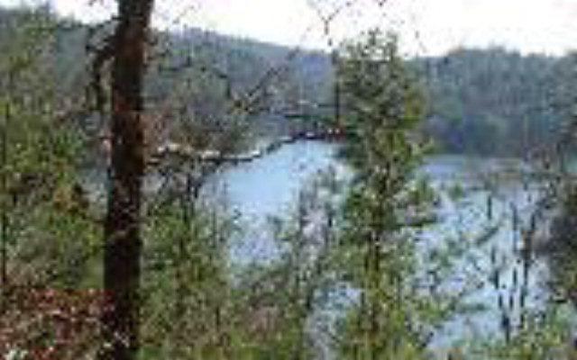NC mountain property 9 APPALACHIA COVE,Murphy,North Carolina 28906 ,Lake access lot For sale,Lake access lot,264853 mountain real estate