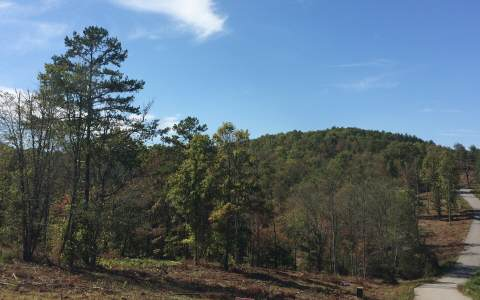 Georgia Mountain land for sale LT 22 BROOKWOOD HILLS,Blairsville,Georgia 30512,Vacant lot,BROOKWOOD HILLS,252454,land for sale Advantage Chatuge Realty
