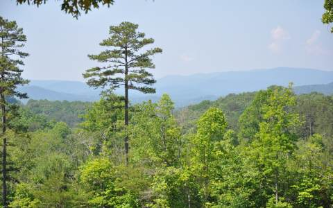 47 AC  BIG VIEW RD, MINERAL BLUFF, GA