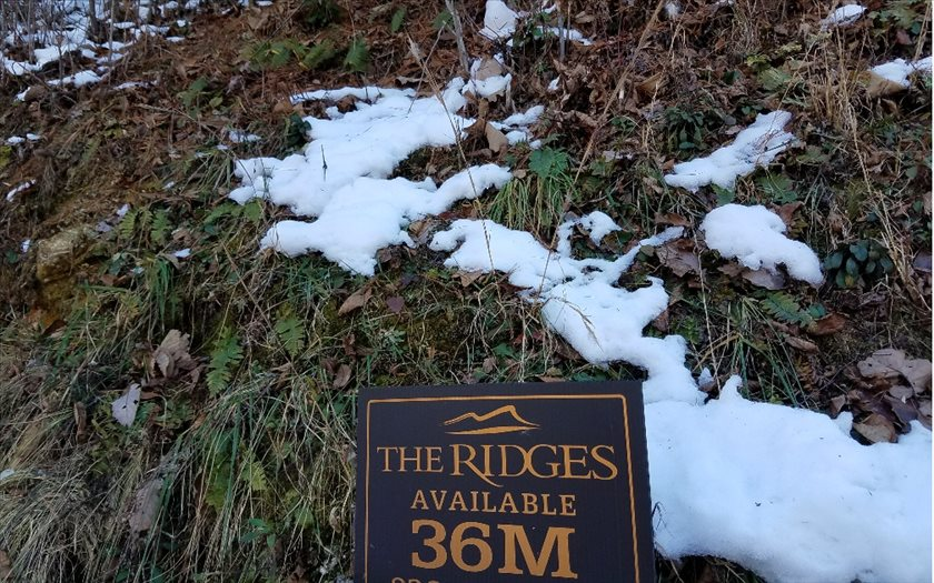 36-M  RIDGES OVERLOOK