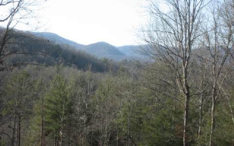 29.75 AC COLWELL ROAD, BLUE RIDGE, GA
