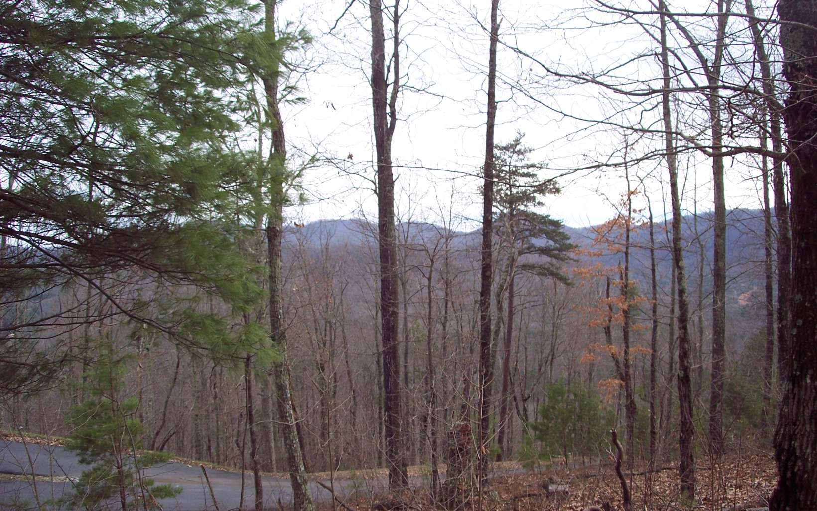 45  CHIMNEY TOP TRAIL