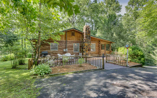 1459  RAY MOUNTAIN ROAD, ELLIJAY, GA