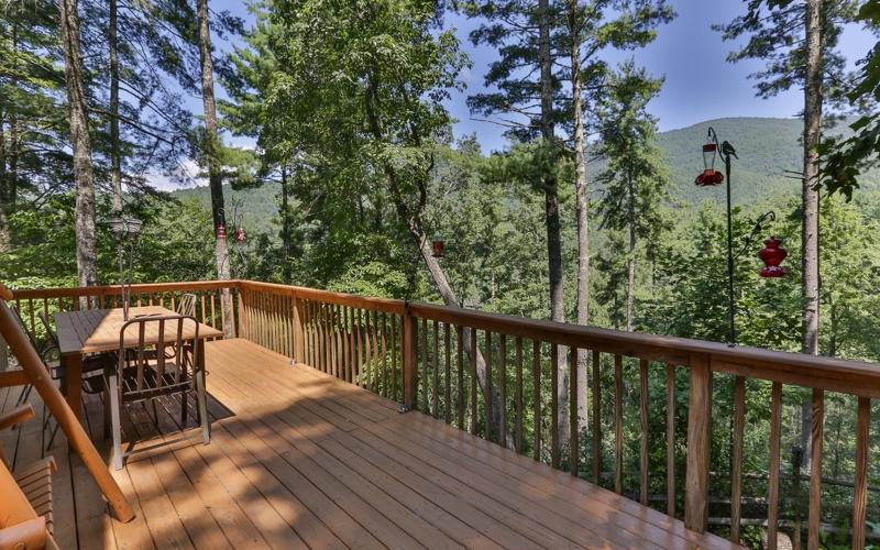 465  COHUTTA FOREST