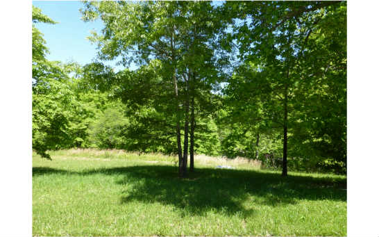 LOT 9  WHITE MEADOWS DRIVE, BLAIRSVILLE, GA