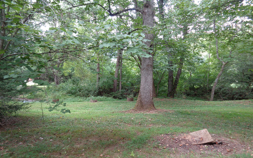 Mountain Property LOT 2 EAGLE FORK ROAD,Hayesville,North Carolina 28904 ,Vacant lot For sale,Vacant lot,EAGLE FORK ROAD,271759 Real Estate