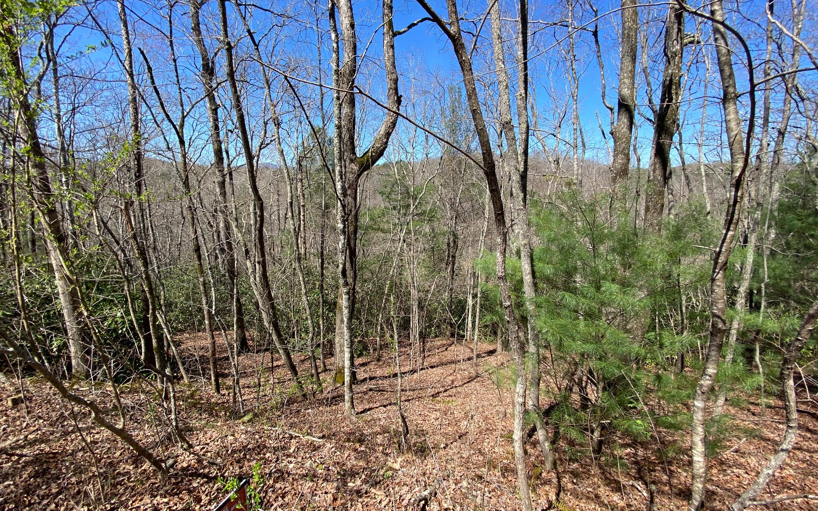 LOT20  CREEK RIDGE ROAD