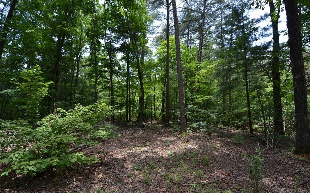LOT 9  WHISPERING OAKS LN