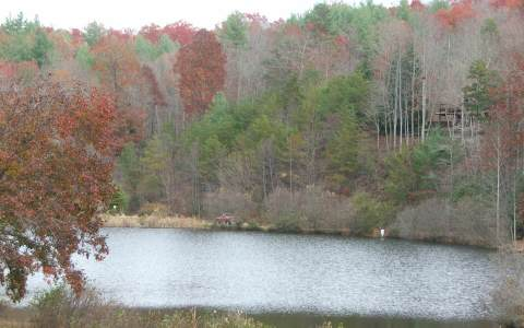 33 LT  BRIAR COVE ROAD, MORGANTON, GA