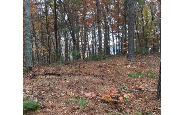 LOFTIS MT. LOT 43