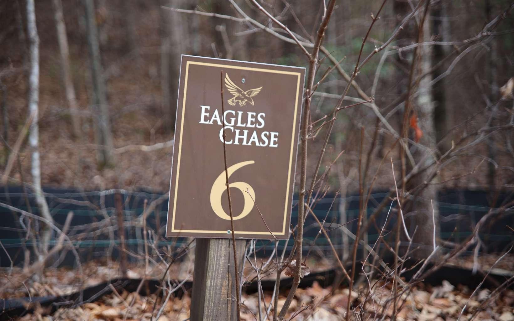 #6  BALD EAGLE DRIVE