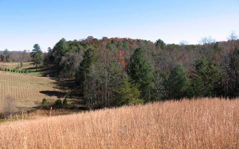 LOT 10 EMELIA ESTATES, MORGANTON, GA