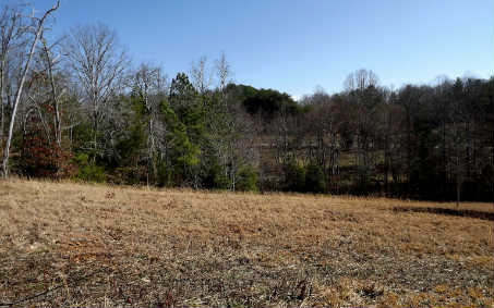 LOT15  AUTUMN HILLS, BLAIRSVILLE, GA